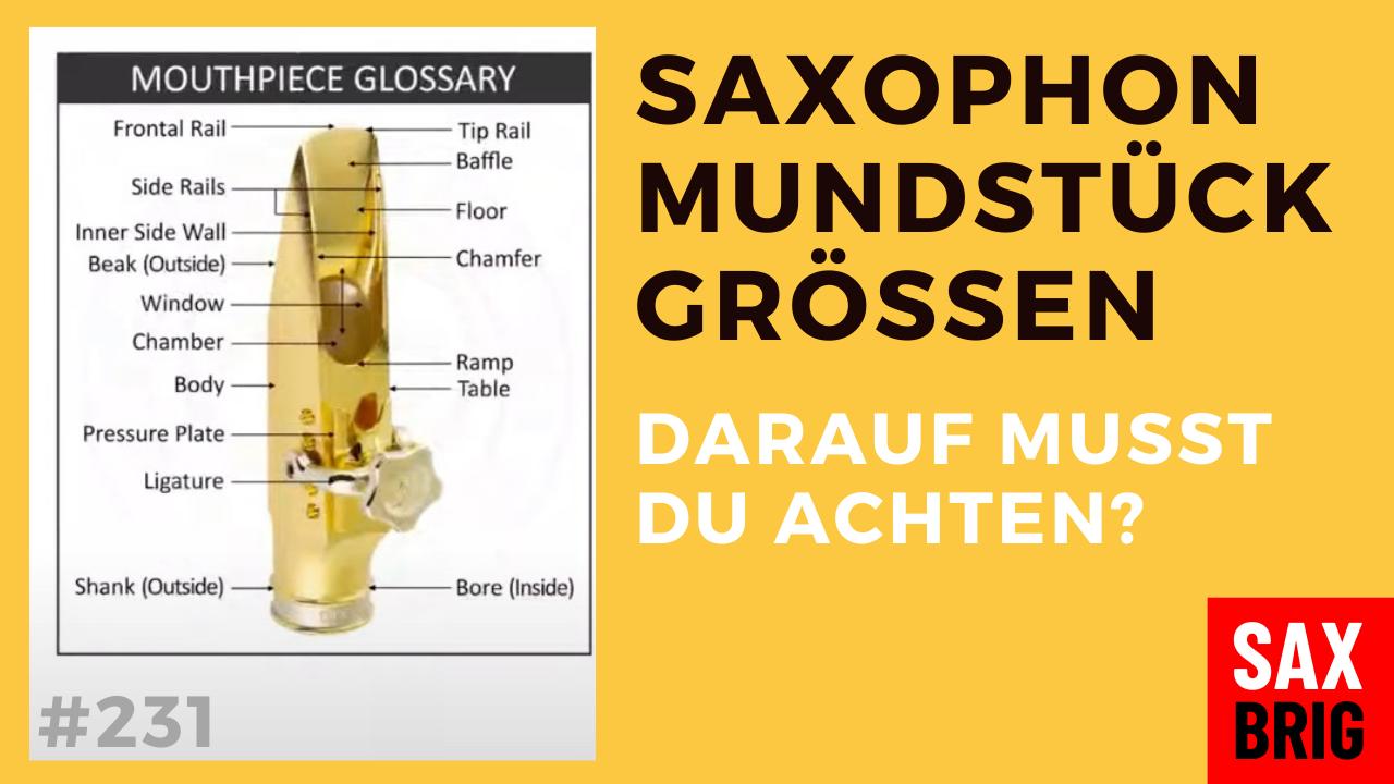 Saxophon Mundstück